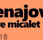 banner-escena-jove-micalet-2017-2018web