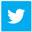 tweeter_icon